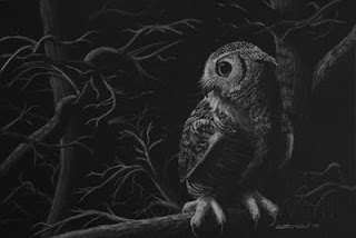 great horned owl white charcoal drawing