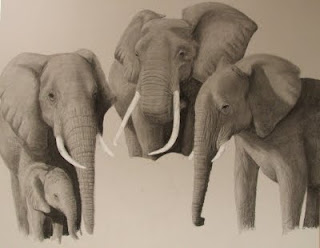 African elephant herd drawing in progress