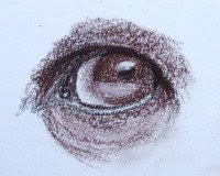 orangutan eye drawing in sepia Conte pencil