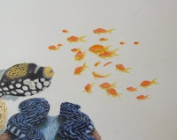 orange fairy basslets, lyretail coralfish, sea goldies drawing