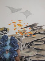 plate coral, staghorn coral, manta rays colored pencil drawing in progress