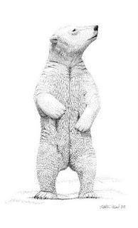polar bear ink pointillism drawing