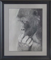 gorilla framed charcoal drawing