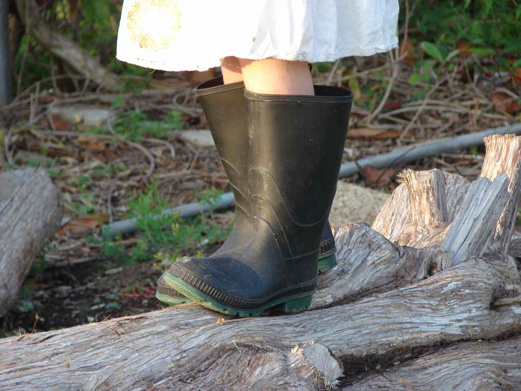 [boots2.jpg]