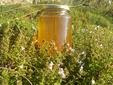 Φίλε μελισσοκόμε.......