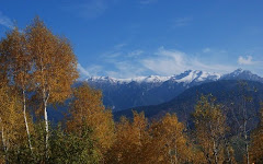 Zona de munte Bran Moeciu