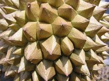 El durián.