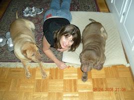 My Dog Children