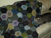 Yogi on my Bobby's Garden afghan