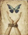 La libertad exige transformación