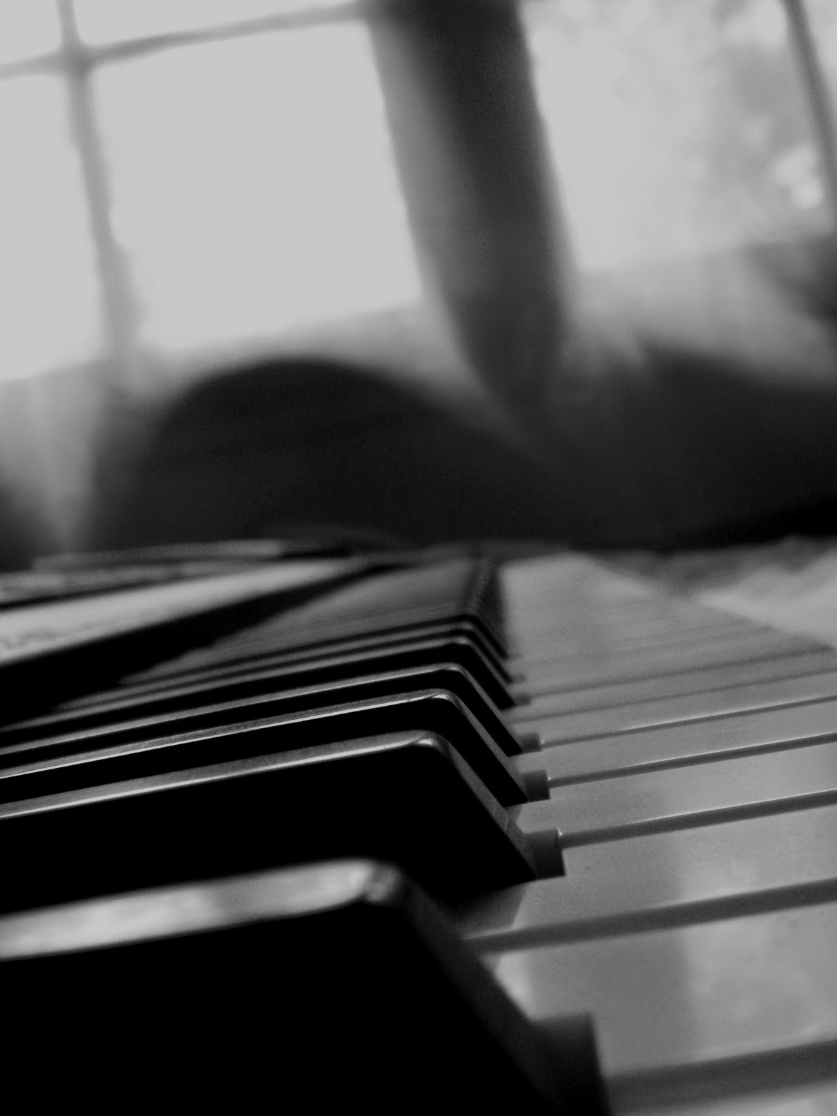 The piano society free classical music - Bar piano blanc et noir ...