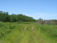 Caribou Township