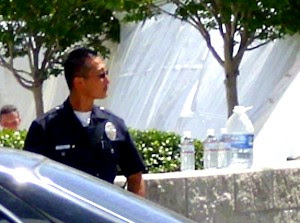 lapd officer that did nothing