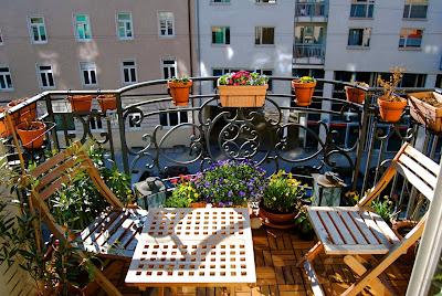 balkonsaison 2010 sichtschutz pflanzen m bel. Black Bedroom Furniture Sets. Home Design Ideas