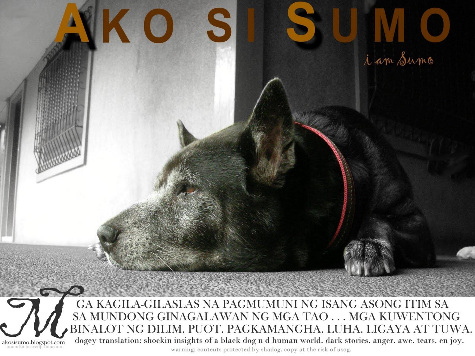 Ako si Sumo