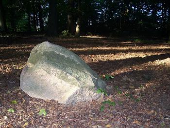 zamieniona w kamień
