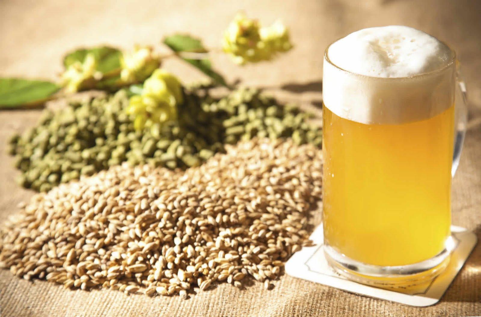 Хмелёфф - пиво в кегах, разливное пиво, живое пиво 34