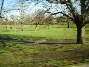 An England Park