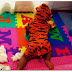 The Playpen and Tigger