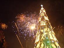 De kerstboom...