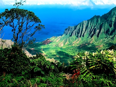 hawaii picture wallpaper. Source url:http://www.newvistawallpaper.com/scenery-wallpapers/hawaii.html