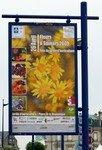 Horticultural show - Flowers and Flavours - Fleurs et Saveurs