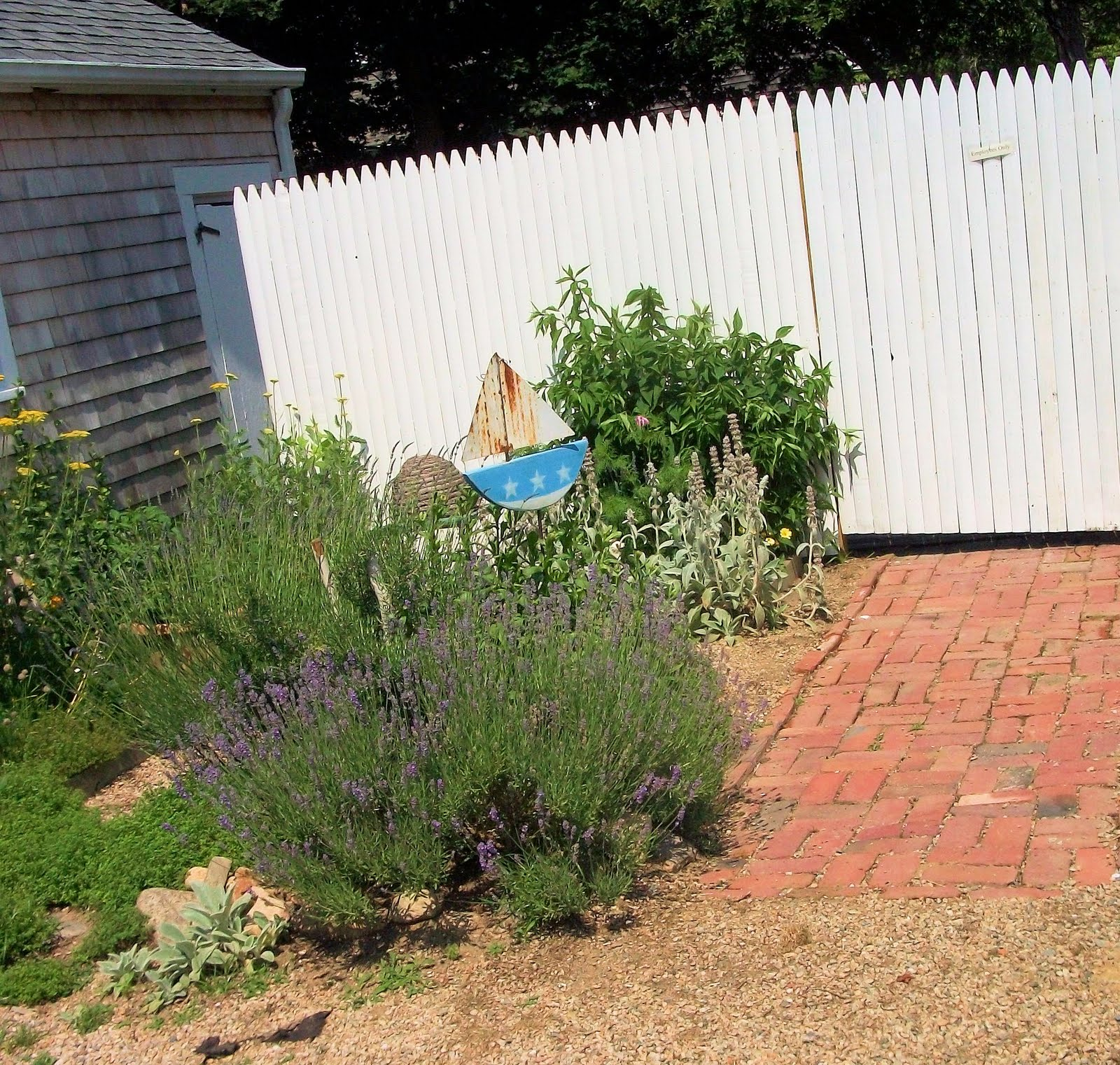 Gone To The Beach: Cape Cod Herb Garden