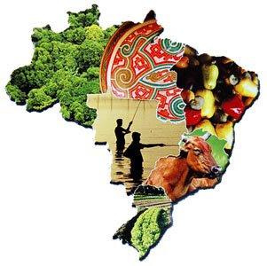 Desenvolvimento Sustentável e Gestão Ambiental