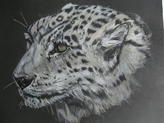 Partner Artist to the Snow Leopard Trust