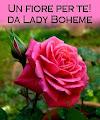 il bellissimo blog di Lady Boheme