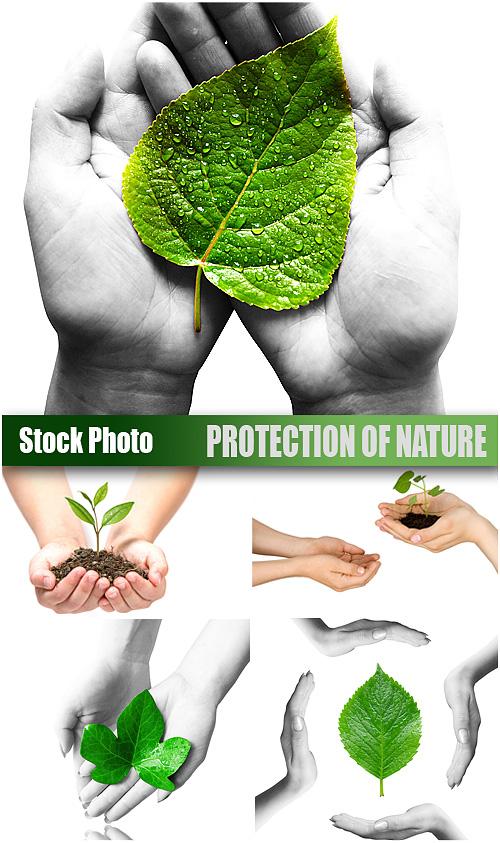 صور لحمايه البيئة