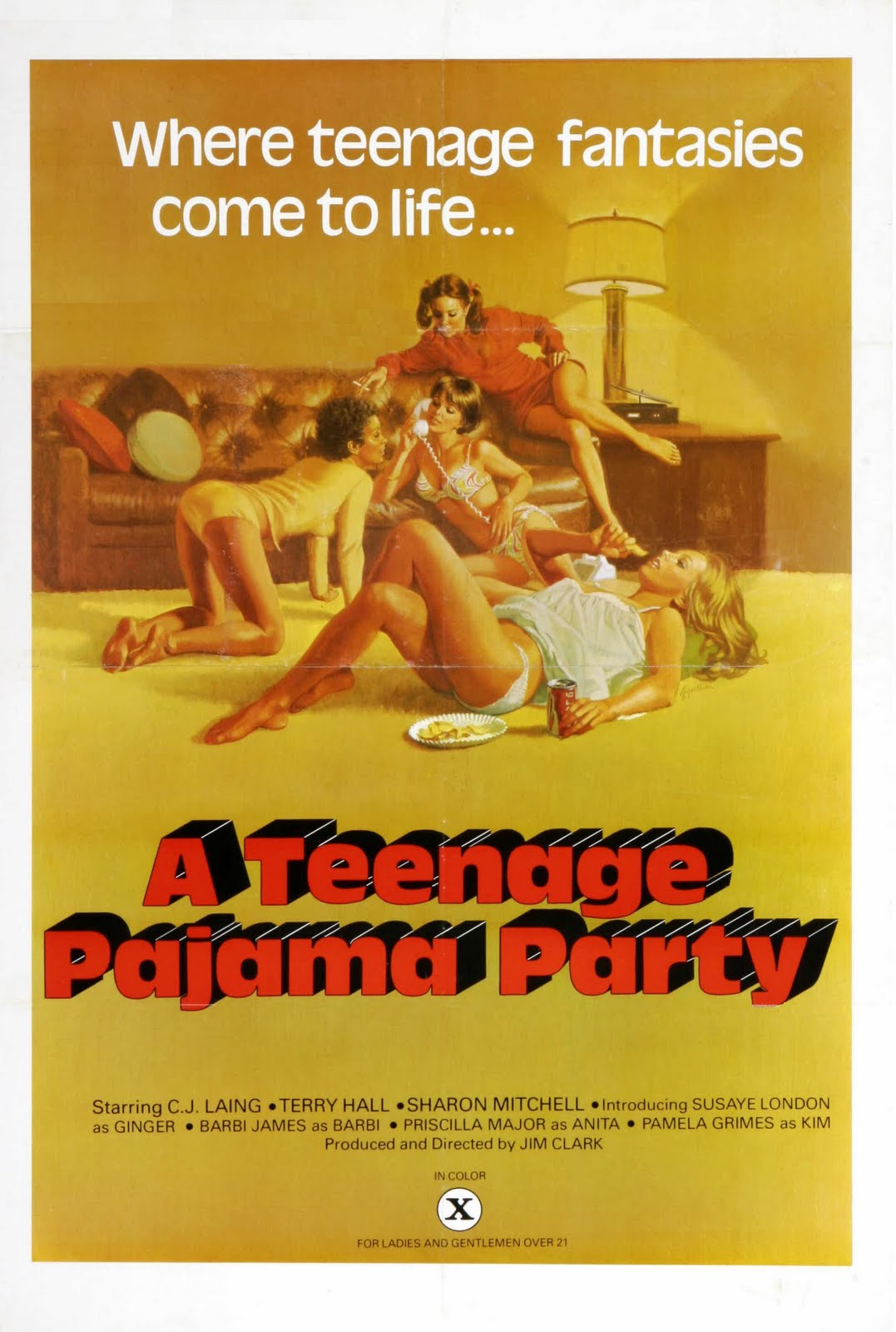 Teenage Pajama Party movie