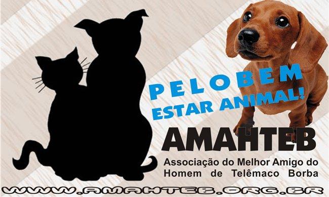 AMAHTEB - TELEMACO BORBA