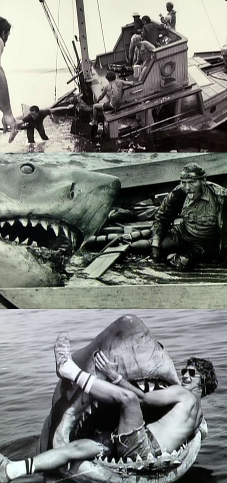 steven spielberg jaws essay Free essay: movie analysis of jaws martin brody is the new police chief trying to rid amity island of a savage shark film analysis of jaws by steven spielberg essay.