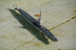submarino gato