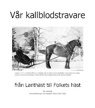 ULLERIKS KALLBLOD I FRONT