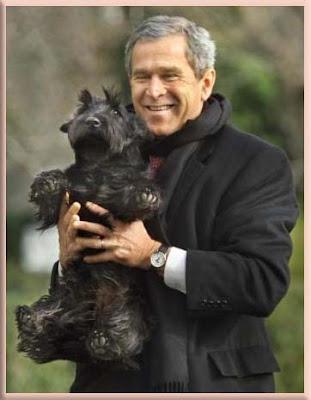 "Bush Plane For Sale >> President Bush with ""Scottish Terriers"""