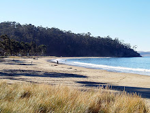 Browns River beach (now Kingston) located on Derwent River, Tasmania
