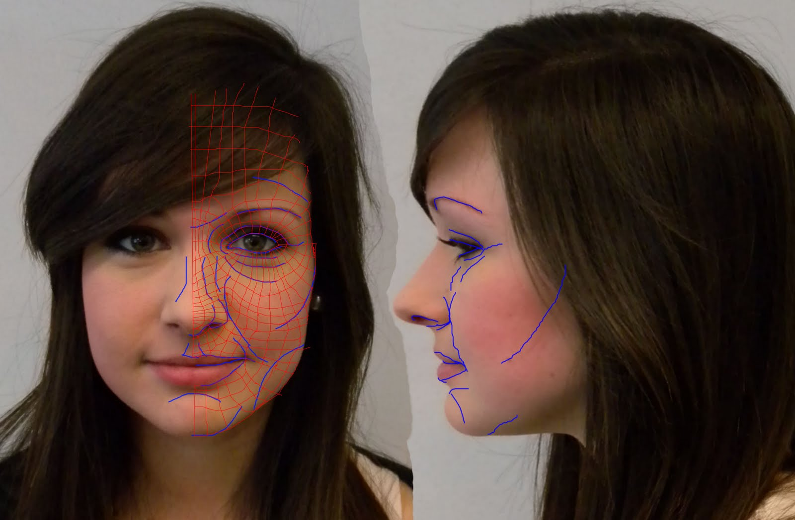 female face reference front and side modelling a head reference