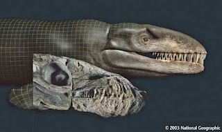 'Godzilla' Fossils Reveal Real-Life Sea Monster photos gallery