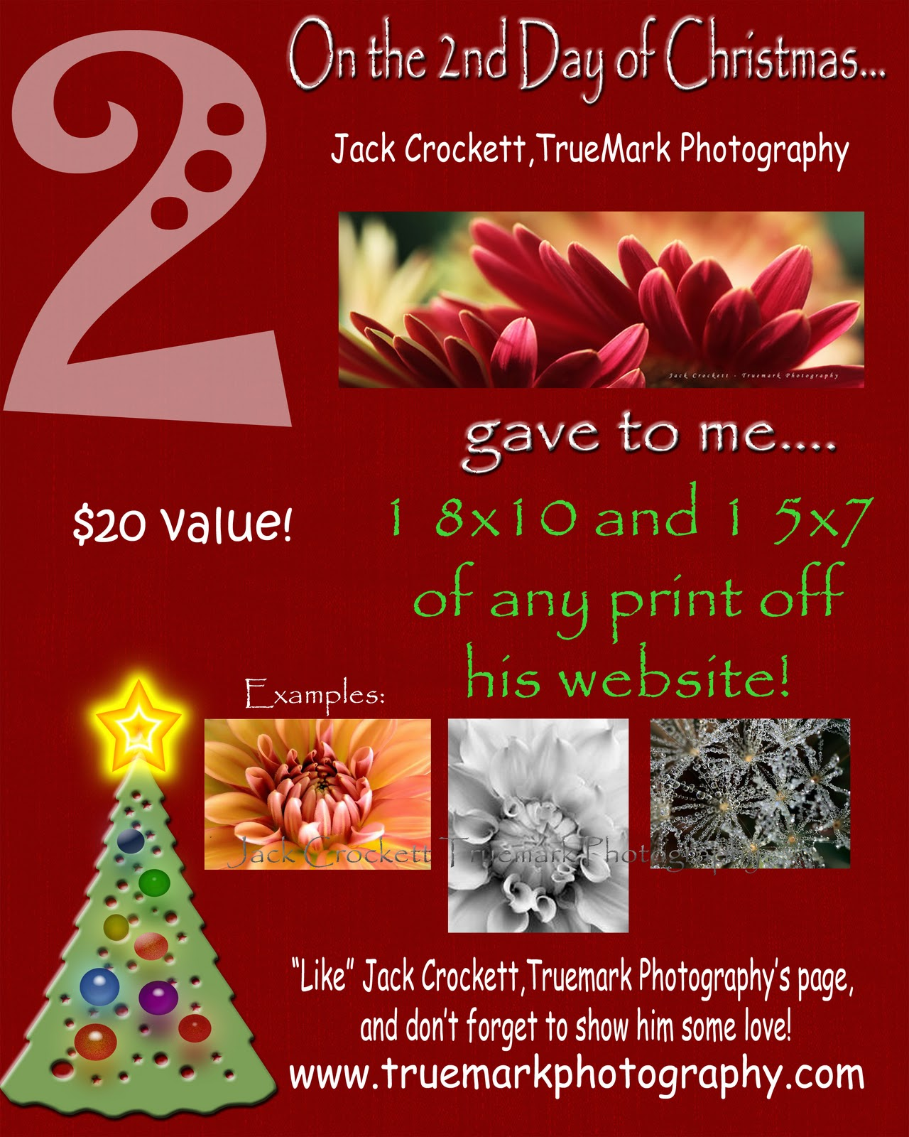 12 days of christmas giveaway photography
