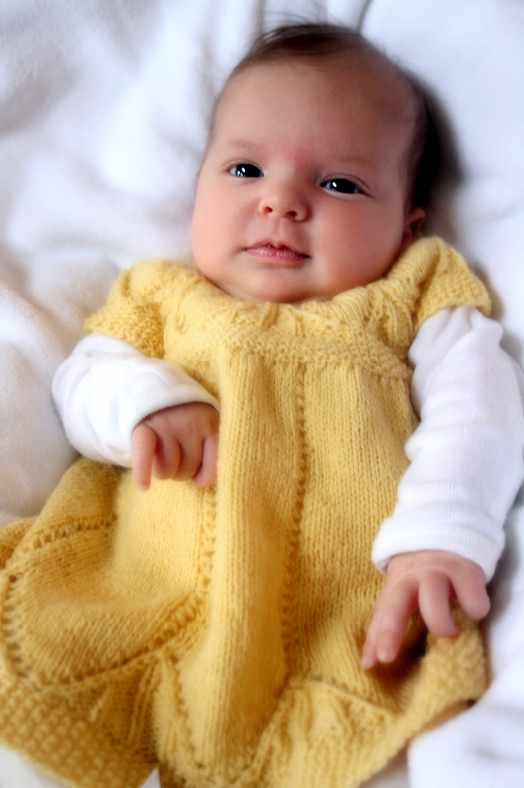 Clara Dress Knitting Pattern : French Press Knits: Elise in Clara