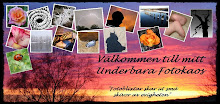 Underbara Fotokaos
