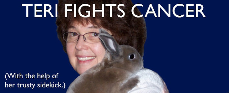 Teri Fights Cancer