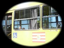Adoro Andar de Ônibus...