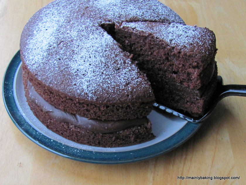 Chocolate Sponge Cake Recipes — Dishmaps