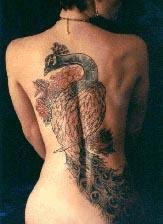 Burung Cedrawasih Tattoo