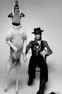 l'immense David Bowie est décédé après avoir publié son ultime chef-d'oeuvre, ★ (Blackstar)  DavidBowieBigDog