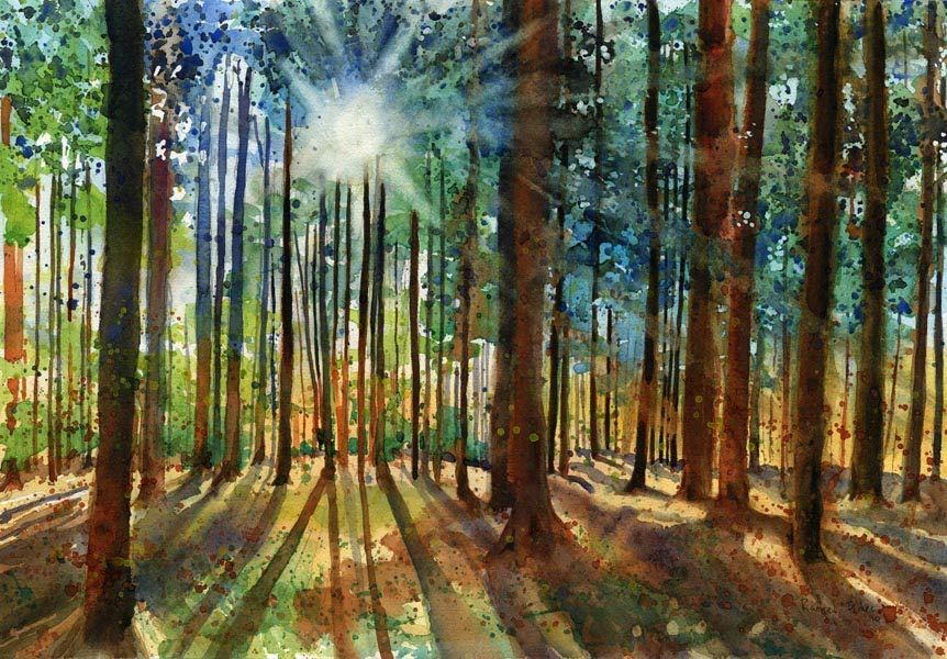 rachel 39 s studio blog new landscape forest painting and