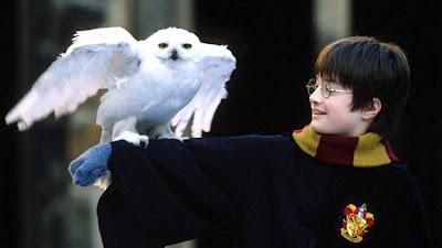 Há 6 anos, SBT exibia 'Harry Potter e a Pedra Filosofal' pela primeira vez!   Ordem da Fênix Brasileira